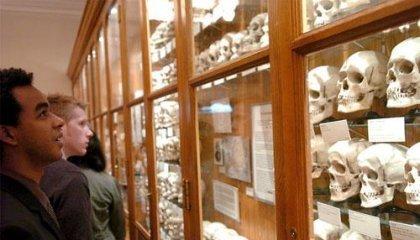 Музей медицинской истории Мюттера