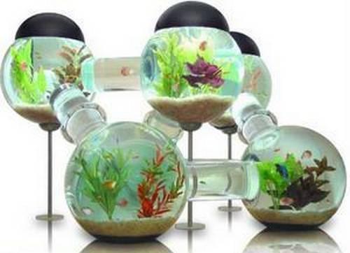 Мегаполис для рыбок