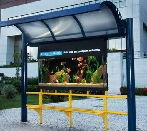 Аквариум автобусная остановка